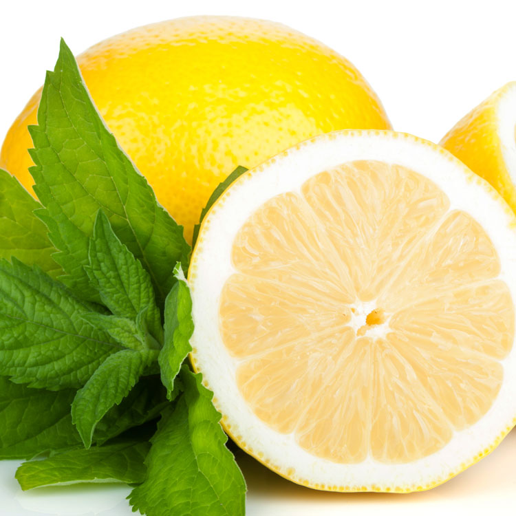Three ripe lemons and mint. Isolated on white background
